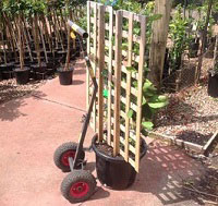 Hand-Trolley-with-Potted-Tree.jpg