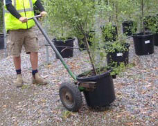 Hand-Trolley-For-Moving-Potted-Trees